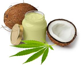 cannabis-coconut-oil-cannabalm-cannacream