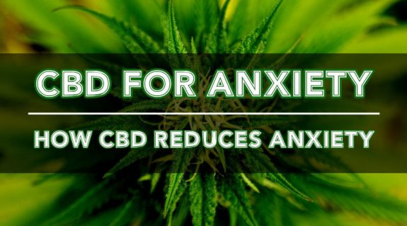 cbd-oil-anxiety