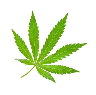 is dagga legal 2018 south africa